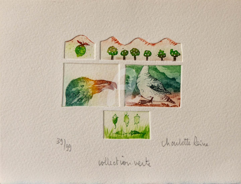 Charlotte Reine - Collection Verte